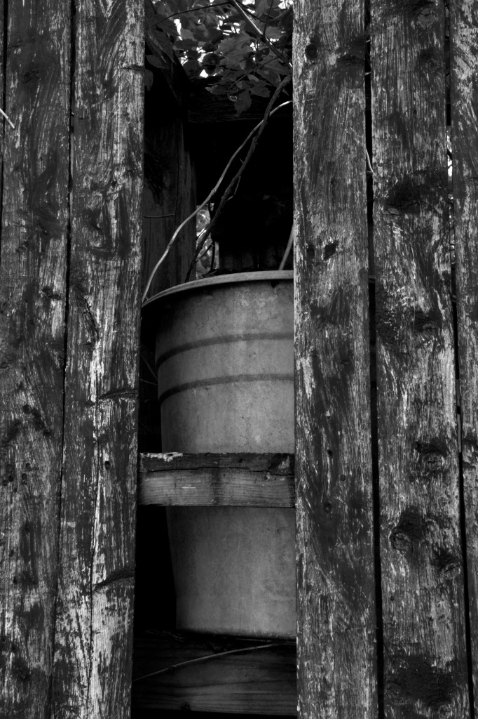 Pots Thru Fence, May 2014, b&w